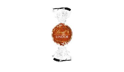 Lindor Lait Noisettes