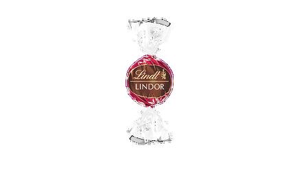 Lindor Double Chocolat (lait, noir)